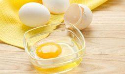 yumurta maskesiyle saç bakımı