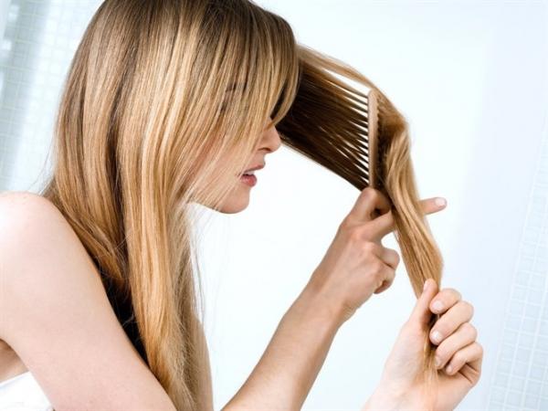 Mevsimsel Saç Dökülmesi