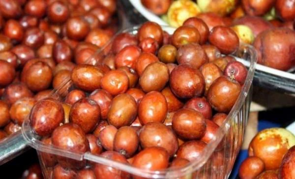 Karaciğeri tamamen yeniliyor! Hünnap meyvesinin faydaları nelerdir? Hünnap çayı nasıl yapılır?